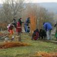 V sobotu 12. listopadu 2011 proběhla v přírodní zahradě U medláneckého rybníka brigáda, jejímž cílem bylo vysadit živý plot okolo zahrady. Děkujeme všem, kteří věnovali část svého volného času dobré […]