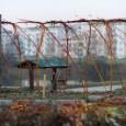Občané pro Medlánky si vás dovolují pozvat na 1. jarní brigádu zaměřenou na úklid a výsadbu vPřírodní zahradě u medláneckého rybníka začínáme v sobotu 13. 4. 2013 ve 14:00 Máte-li […]