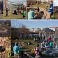 V sobotu 13. 4. 2013 proběhla 1. jarní brigáda v Přírodní zahradě u medláneckého rybníka. Děkujeme všem, kteří nám přišli pomoci vyčistit jezírko, vyplet záhony, založit záhon nový, vysadit rostliny […]
