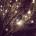 MČ BRNO-MEDLÁNKY A OBČANÉ PRO MEDLÁNKY VÁS ZVOU NA SLAVNOSTNÍ ROZSVÍCENÍ MEDLÁNECKÉHO VÁNOČNÍHO STROMU VNEDĚLI 30. 11. 2014 v17.00 KDE: u kruhového objezdu vsrdci Medlánek (V Újezdech 1)  Na […]