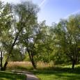 SOUSEDSKÁ PARTY  Kde : Přírodní zahrada u medláneckého rybníka a mokřad při ulici Jabloňová  Kdy: 6. 6. 2014 od 17:00  Svátek sousedů je neformální, celoevropská iniciativa občanů, […]