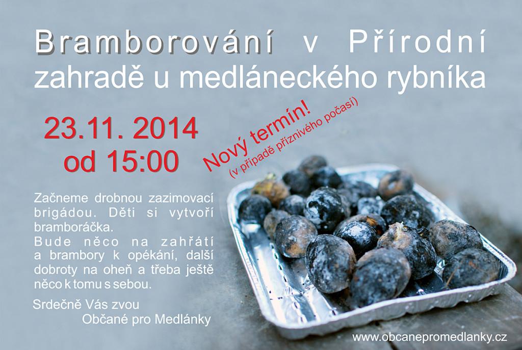 brambory2014a