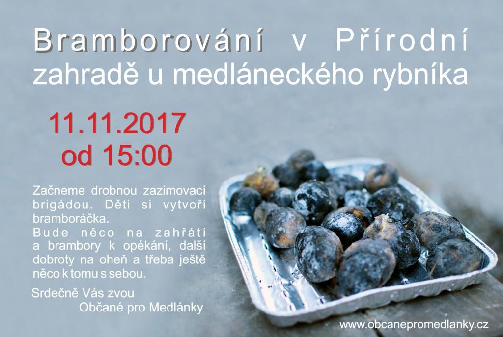 brambory2017
