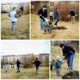 Tak a je to tady …. první brigáda na naší – vaší zahradě je stanovena na SOBOTU 26.3.2011 Program : vyčištění plácku pro přírodní zahradu U medláneckého rybníka. S sebou […]