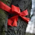 12. listopadu 2013 jsme převzali pod bukem červeným od nadace Veronica diplom Stromu roku 2013. Stal se jím na základě hlasování široké veřejnosti právě tento 200 let starý červený buk, […]