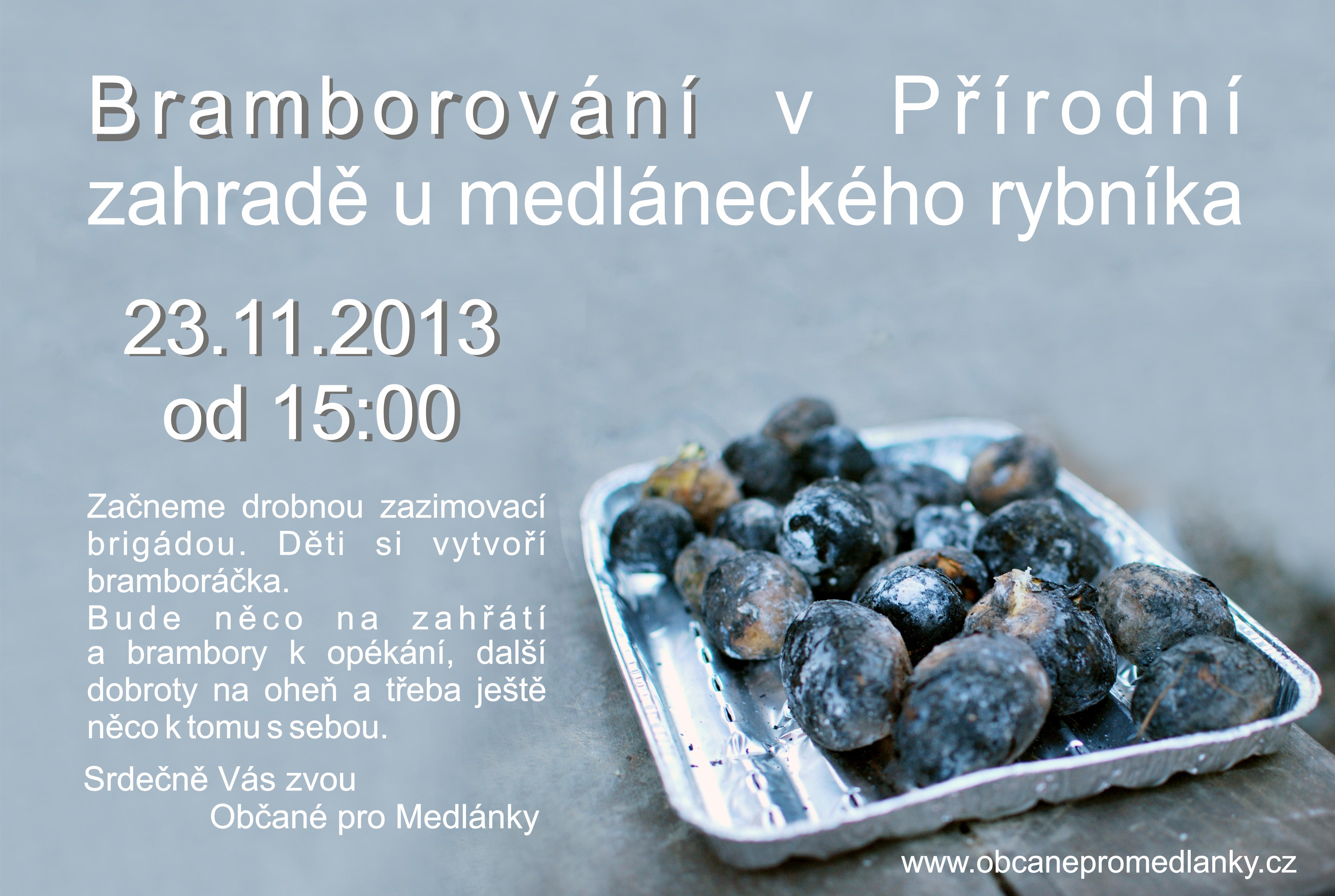 brambory2013