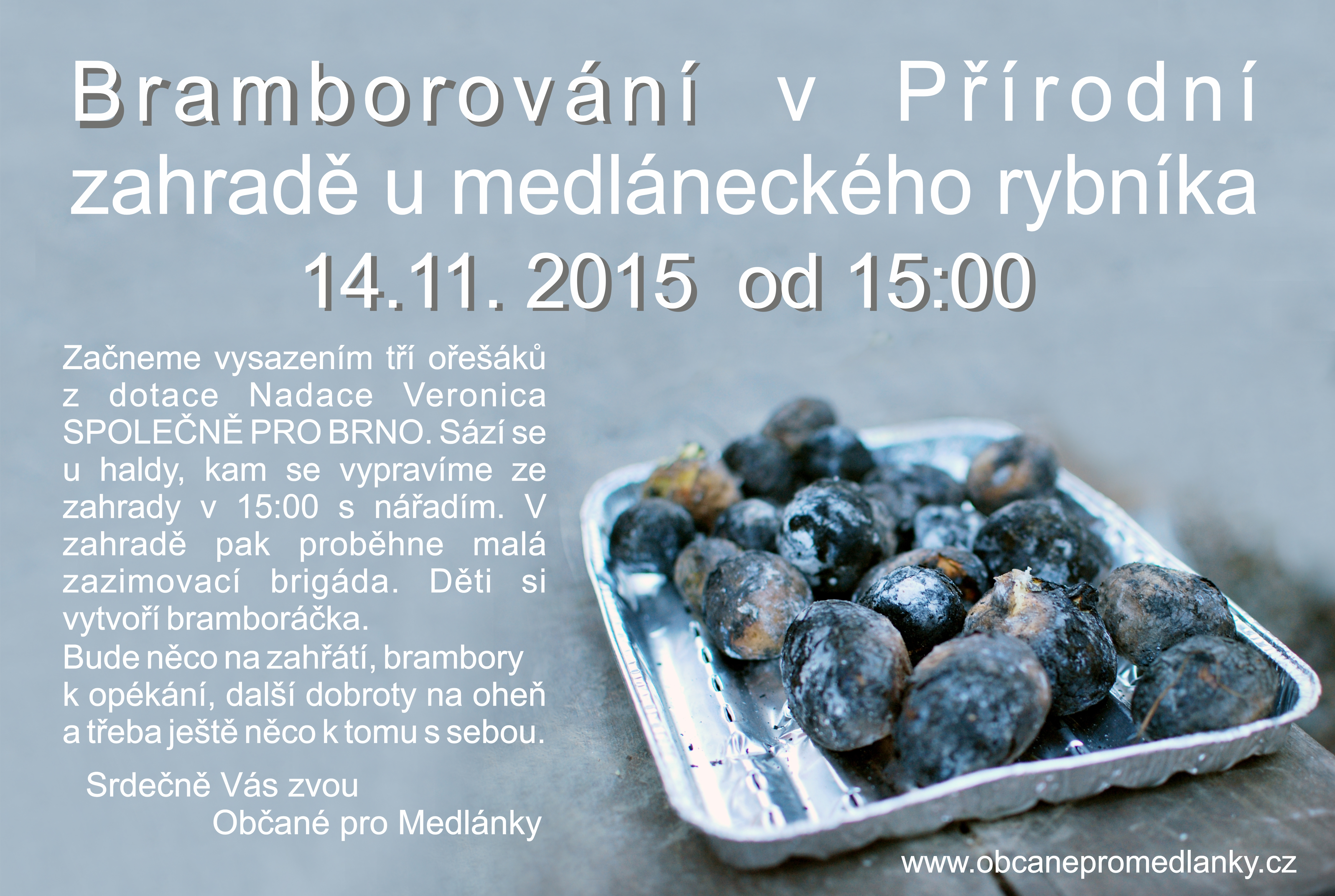 brambory2015
