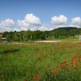 Vrámci participativního rozpočtu města Brna (Dáme na Vás) uspěl také projekt Dobrodružné hřiště Halda, navrhovaný spolkem OPM (více níže včlánku Blanky Teplanové). Máme velkou radost ztoho, že Medlánky budou moci […]
