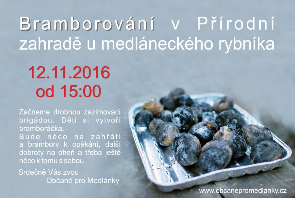 brambory2016